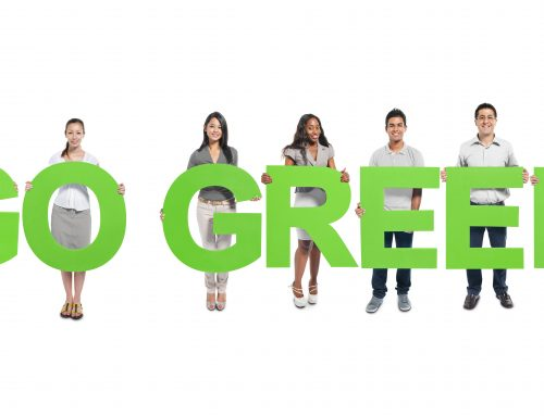 Go Green: Rent Instead of Buy for Parties and Events
